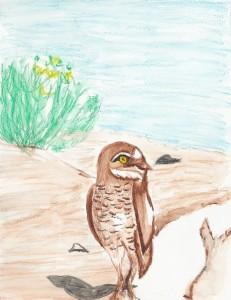 The Cursing Owl 1