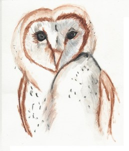 The Cursing Owl 3