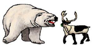 polar-bear-lone